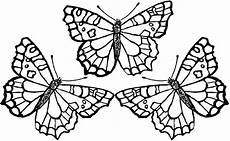 Schmetterling Malvorlagen Detailed Butterfly Coloring Pages At Getcolorings