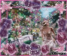 fiori e fate giardino di fiori e fate picture 88284024 blingee