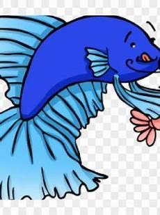 Makanan Ikan Cupang Cepat Bertelur makanan ikan cupang archives harga jual cupang