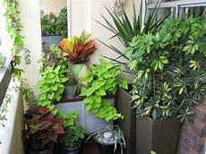 balkon ideen pflanzen and interior small spaces balcony garden