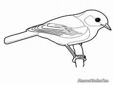 Gambar Kartun Hitam Putih Burung Keren Bestkartun