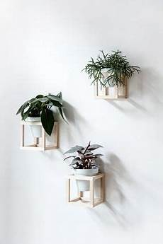 pflanzen deko wohnzimmer wohnen mit pflanzen diy h 228 ngende pflanzenhalter