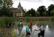 buckland surrey maintenance village pond and green