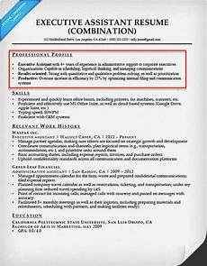 resume professional profile exles how to write a resume profile or summary statement