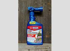 All Natural Pest Control-Non Toxic Pest Control Companies