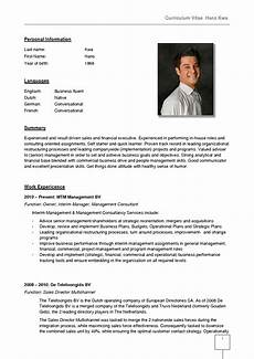 resume format germany 2 resume format cv template doc