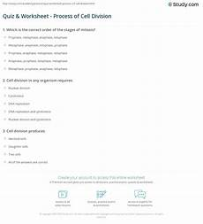 cell division worksheet with answers 6961 quiz worksheet process of cell division study