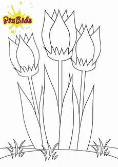 Malvorlage Kostenlos Ausmalbild Tulpe Kostenlose Malvorlage