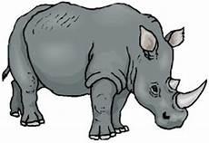 Malvorlagen Tiere Kostenlos Runterladen Malvorlagen Tiere Nashorn