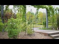 Rankhilfen Für Kletterpflanzen - garten obelisk rankhilfe