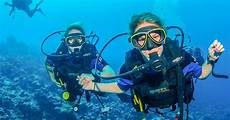 discover scuba diving in dubai dubai united arab