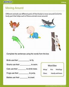 new 178 first grade science worksheets animals firstgrade worksheet