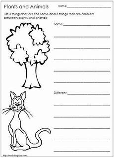 animal needs worksheets 1st grade 13970 1000 images about winter migration hibernation and habitats on the winter