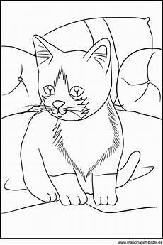 Malvorlagen Hase Rom Katze Ausmalbilder Zum Ausdrucken Kostenlos