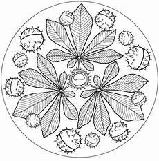 kastanien mandala herbst mandala ausmalen herbst