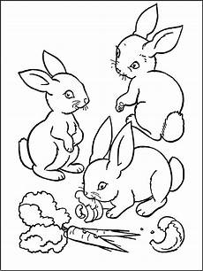 rabbit to print for free rabbit coloring pages