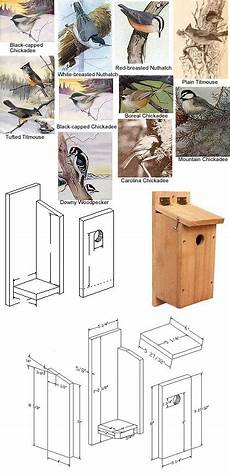 chickadee bird house plans chickadee nuthatches titmouse nesting box bird houses