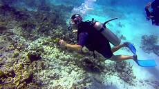 scuba diving in cancun mexico june 2013 youtube