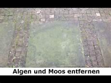moos steinen entfernen algen und moos entfernen ohne chemie in berlin sandstein