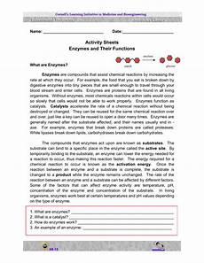 enzymes and their functions activity sheets