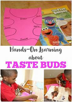 11 hands on activity ideas for early childhood special teach your kids with this fun hands on learning activity