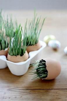 Tischdeko Ostern Selber Machen - osterdeko selber machen 105 frische ideen f 252 r mehr