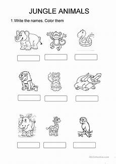 jungle animal worksheets 14319 jungle animals esl worksheets for distance learning and physical classrooms
