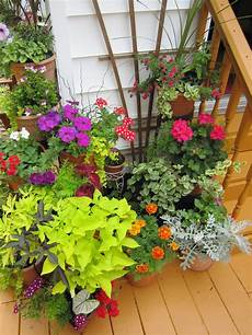 plantscaping a deck or patio outdoor spaces patio