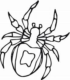 insect coloring page book gif gif by pauljorg31 photobucket