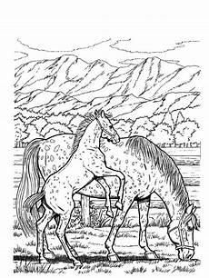 ausmalbilder pferde im stall ausmalbild club