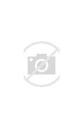 Loretta Goggi