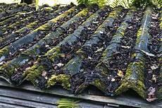 mousse sur le toit comment enlever la mousse sur le toit