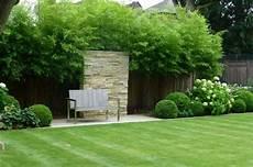 hohe pflanzen als sichtschutz bambus im garten diy sichtschutz f 252 r die terrasse