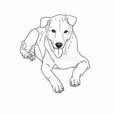 Malvorlage Liegender Hund Zeichnung Des Traurigen Streunenden Hundes Vektor