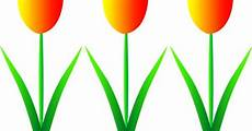 Gambar Bunga Kartun Bunga Tulip Tempat Untuk