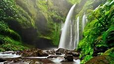 11 Wisata Air Terjun Di Lombok Yang Plaing Indah Dan Keren