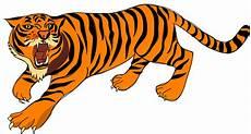Koleksi 45 Gambar Animasi Hewan Harimau Hd Terbaik