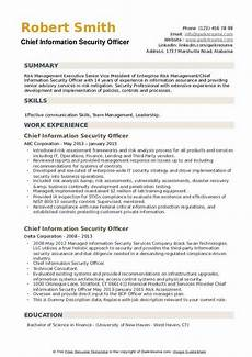 chief information security officer resume sles qwikresume