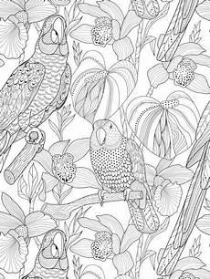 Aquarell Malvorlagen Tiere Coloriage Vogel Malvorlagen Malvorlagen Und Farben