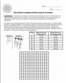 graphing data worksheets amy brown science november 2011