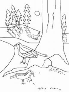Vogel Malvorlagen Instagram Bilder Zum Ausmalen Vogel Im Winter
