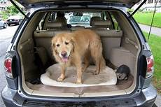 5 easy tips for keeping your safe in the car the