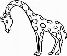 Ausmalbilder Kostenlos Ausdrucken Giraffe Giraffe Zum Ausdrucken 1046 Malvorlage Giraffe