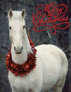 merry christmas with wreath by union county saddle club home in the mountains