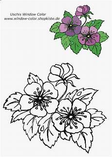 Window Color Malvorlagen Blumen Blumen Vorlagen 1 Blumen Vorlage Blumenzeichnung Tole
