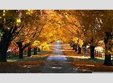 Download HD Nature Backgrounds   PixelsTalk.Net