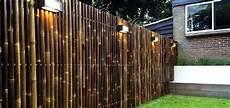 Cl 244 Ture En Bambou Pour Une Touche Orientale Dans Le Jardin