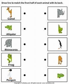 animal parts worksheets esl 14296 pin on matching