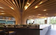 arbre d interieur design cenar bajo un gran 225 rbol de madera espacios en madera