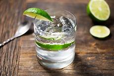 10 best gin drink recipes